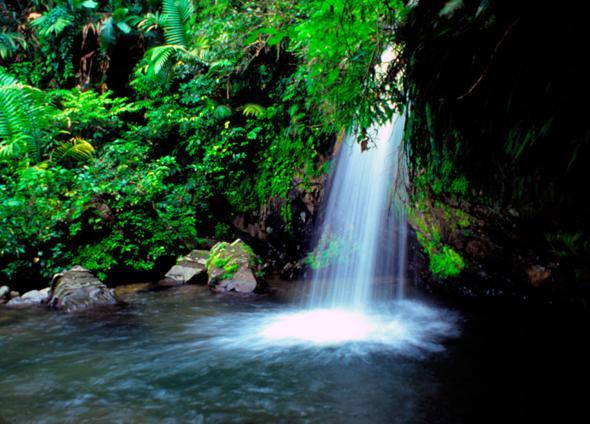 Beautiful Pictures Of Puerto Rico El Canario Lagoon Hotel