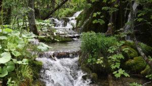 top natural wonder puerto rico