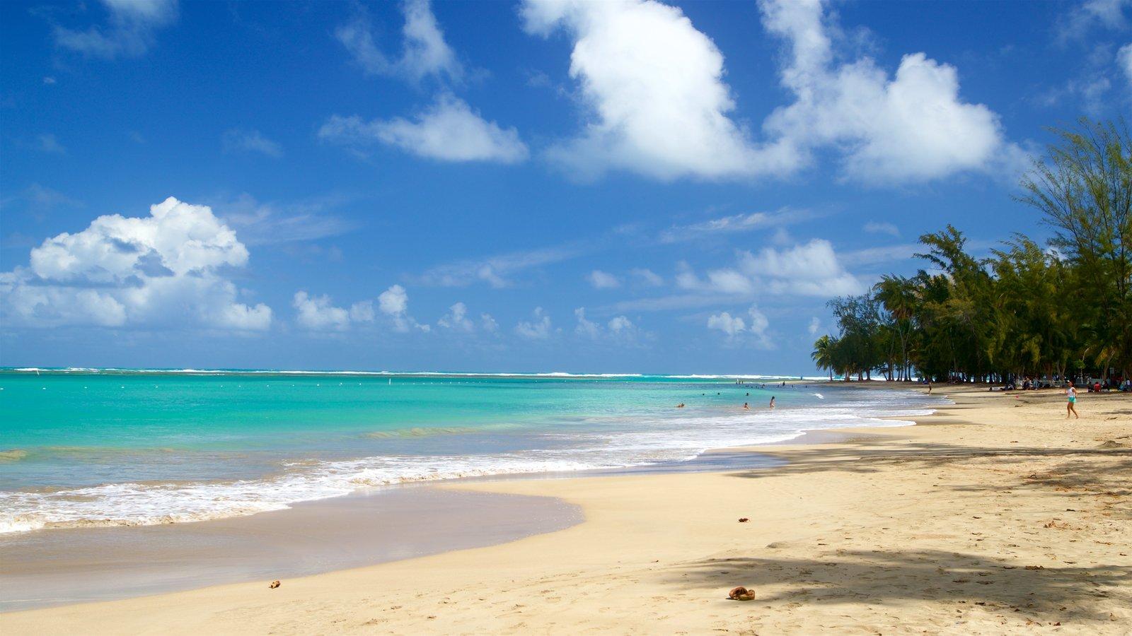 benefits of swiming in the sea el canario lagoon hotel. Black Bedroom Furniture Sets. Home Design Ideas