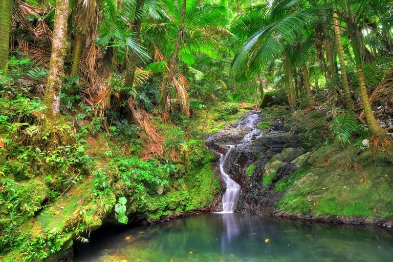 Magical Spots Puerto Rico