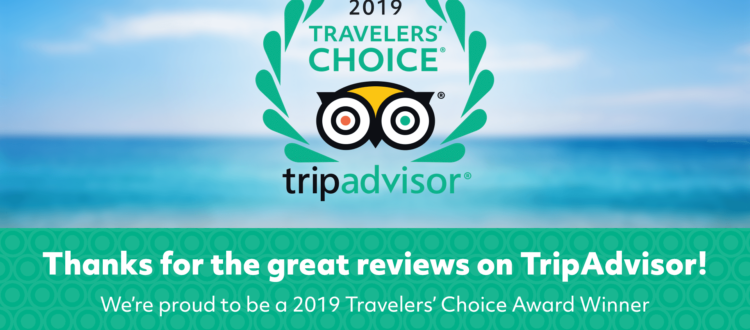 trip-advisor-travelers-choice-award