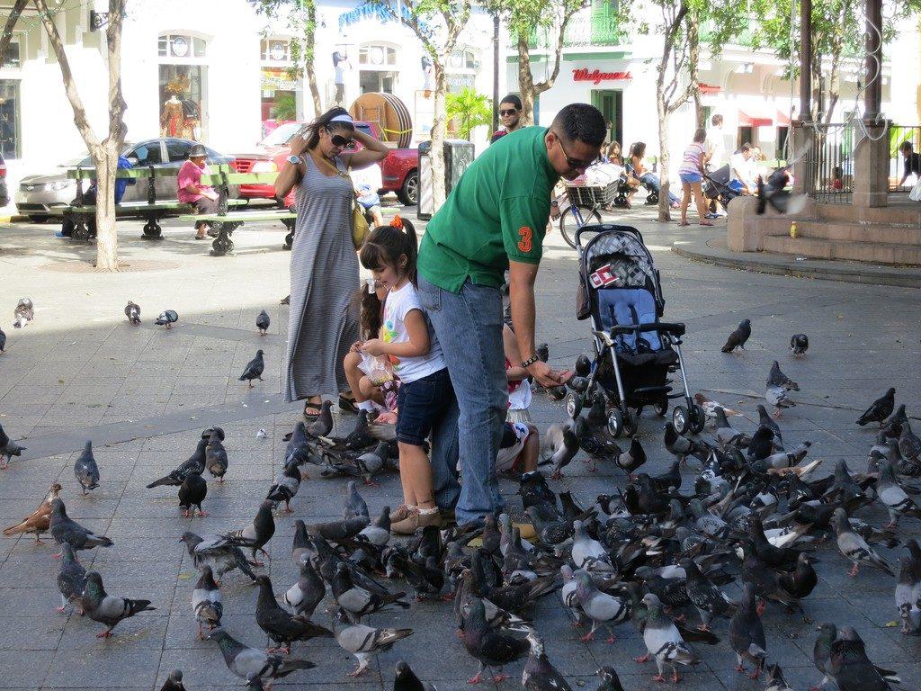 kids in san juan